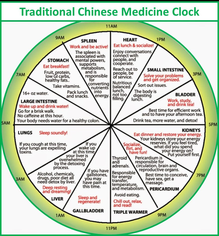 Reference: http://www.aholistichealingcentre.com.au/wp-content/uploads/2017/05/Chinese-medicine-clock.png